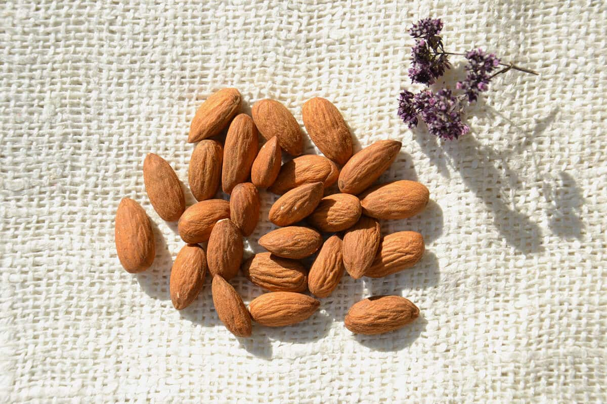 Nuts and Seeds: the wellness allies